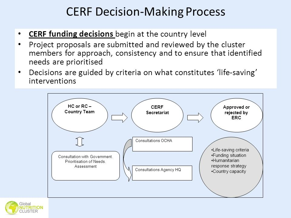 CERF Decision-Making Process