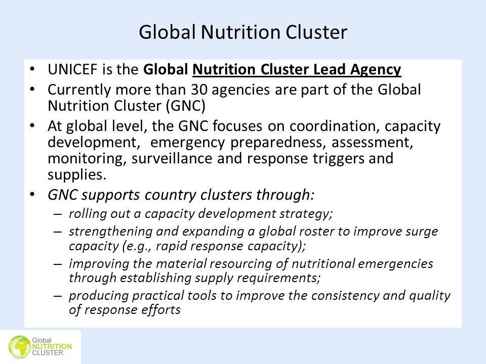 Global Nutrition Cluster
