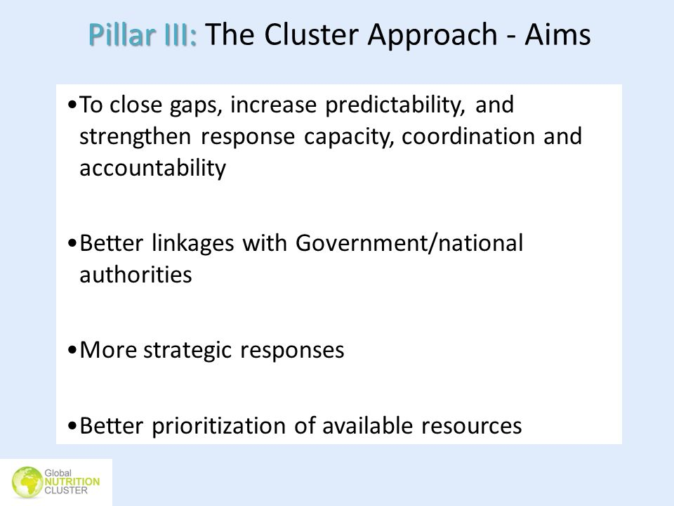 Pillar III: The Cluster Approach - Aims