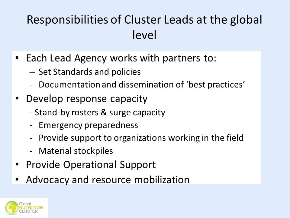 Responsibilities of Cluster Leads at the global level