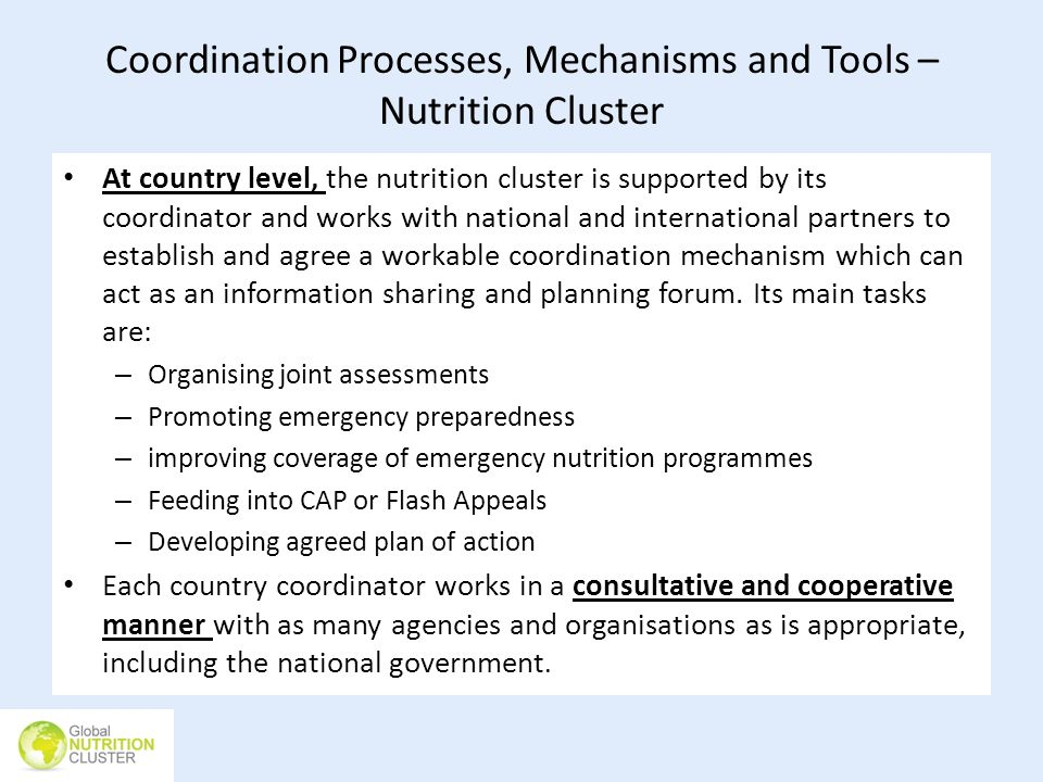 Coordination Processes, Mechanisms and Tools – Nutrition Cluster