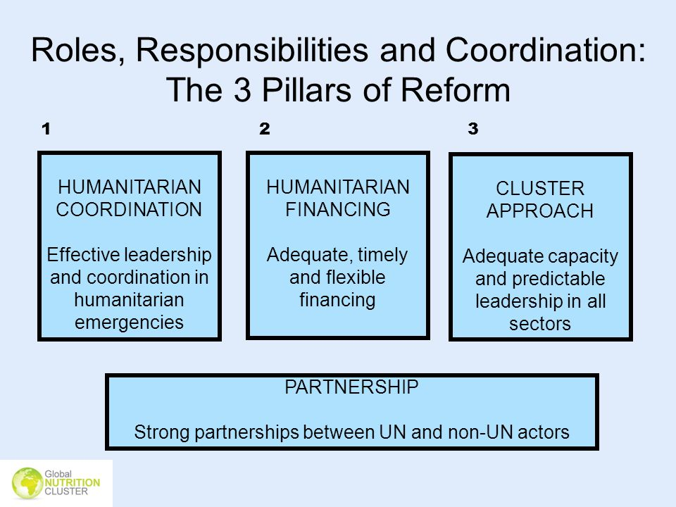 Roles, Responsibilities and Coordination: The 3 Pillars of Reform