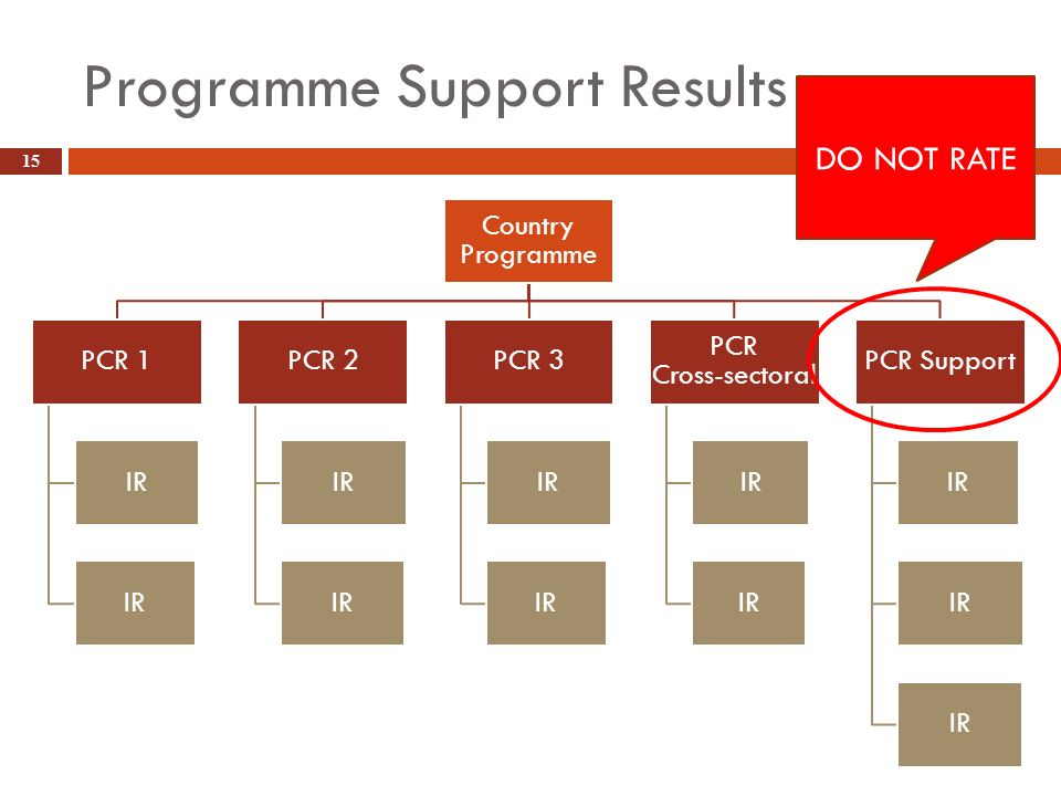 Programme Support Results