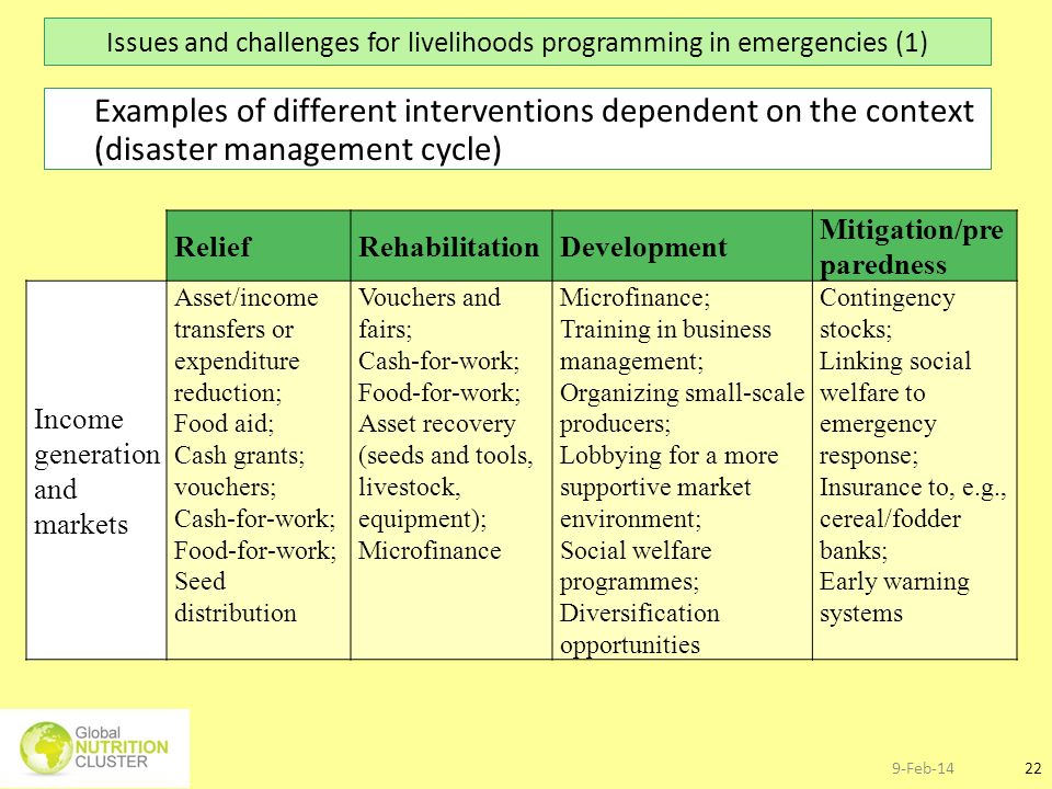 Issues and challenges for livelihoods programming in emergencies (1)
