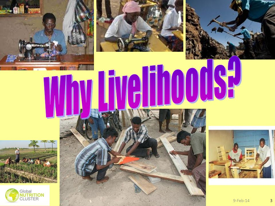 Why Livelihoods 27-Mar-17