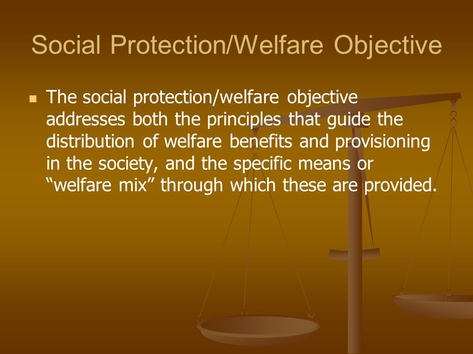 Social Protection/Welfare Objective