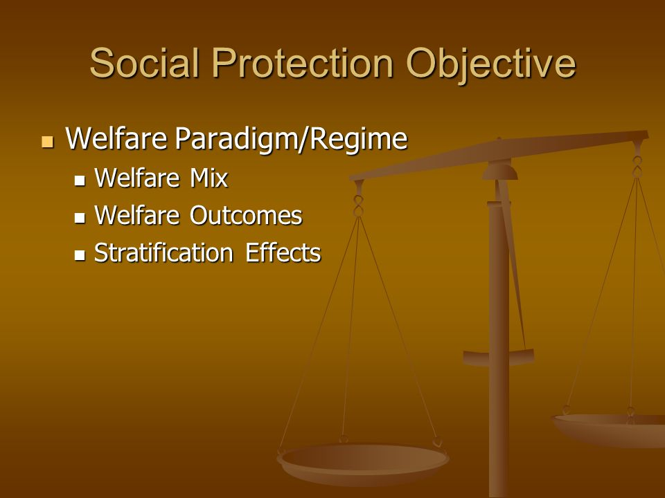 Social Protection Objective