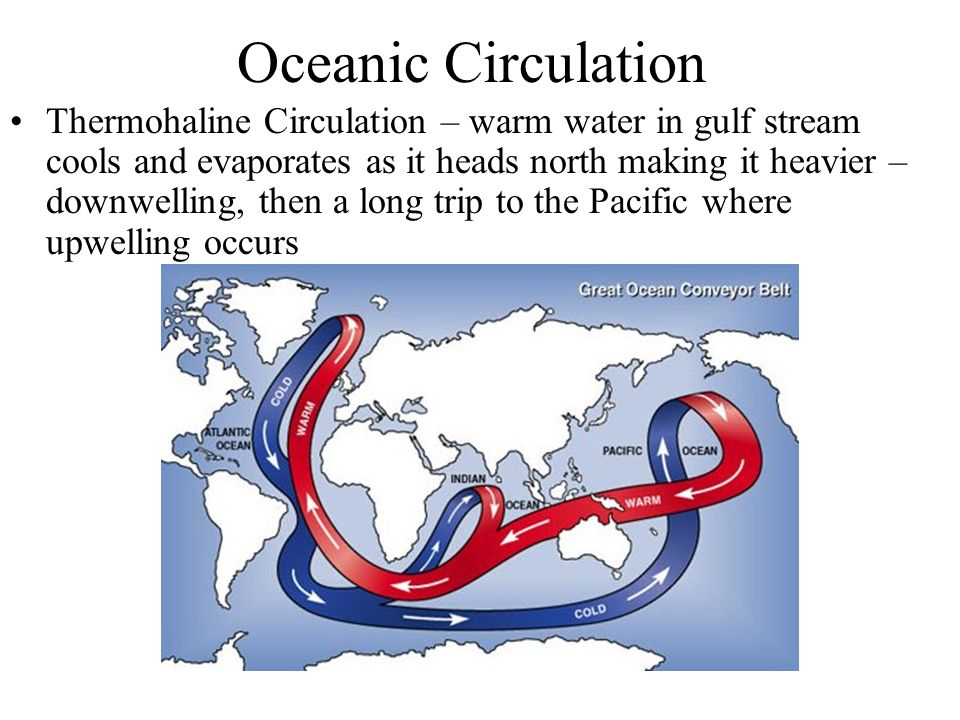 oceanic circulation and its role in The great ocean currents – the water plays a central role in the climate system its density varies change could influence thermohaline circulation and.