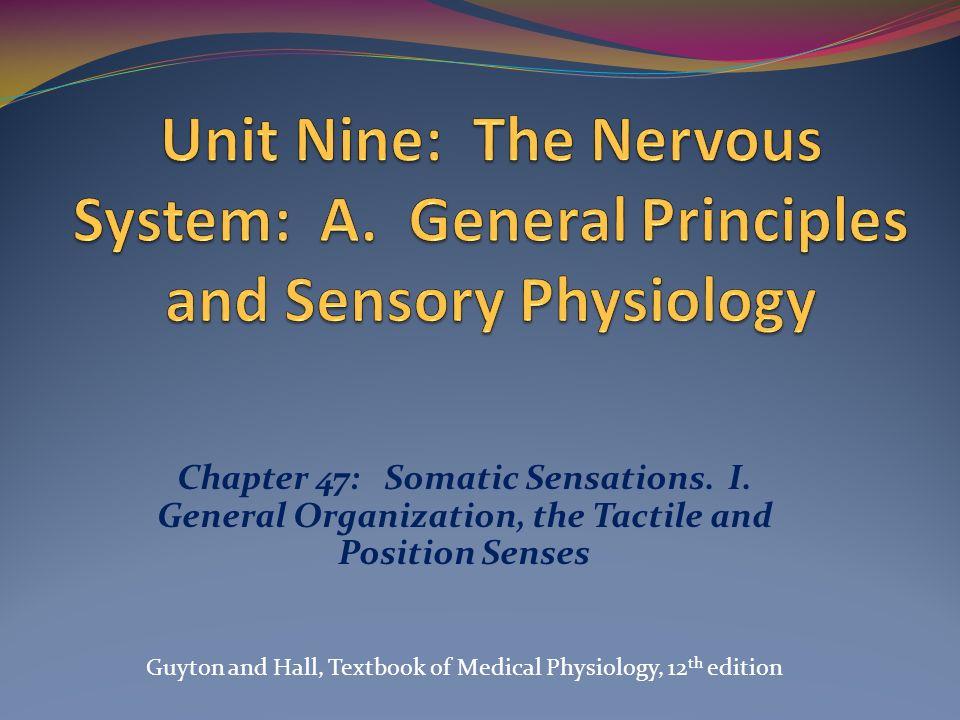 Unit Nine: The Nervous System: A - ppt video online download