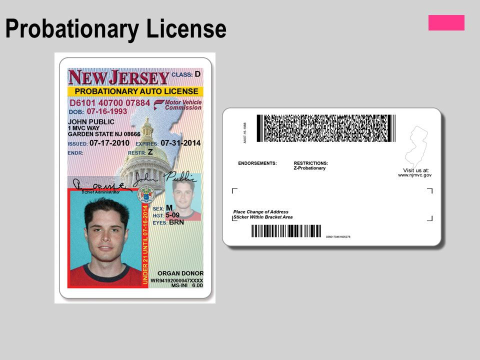 Car registration nj dmv