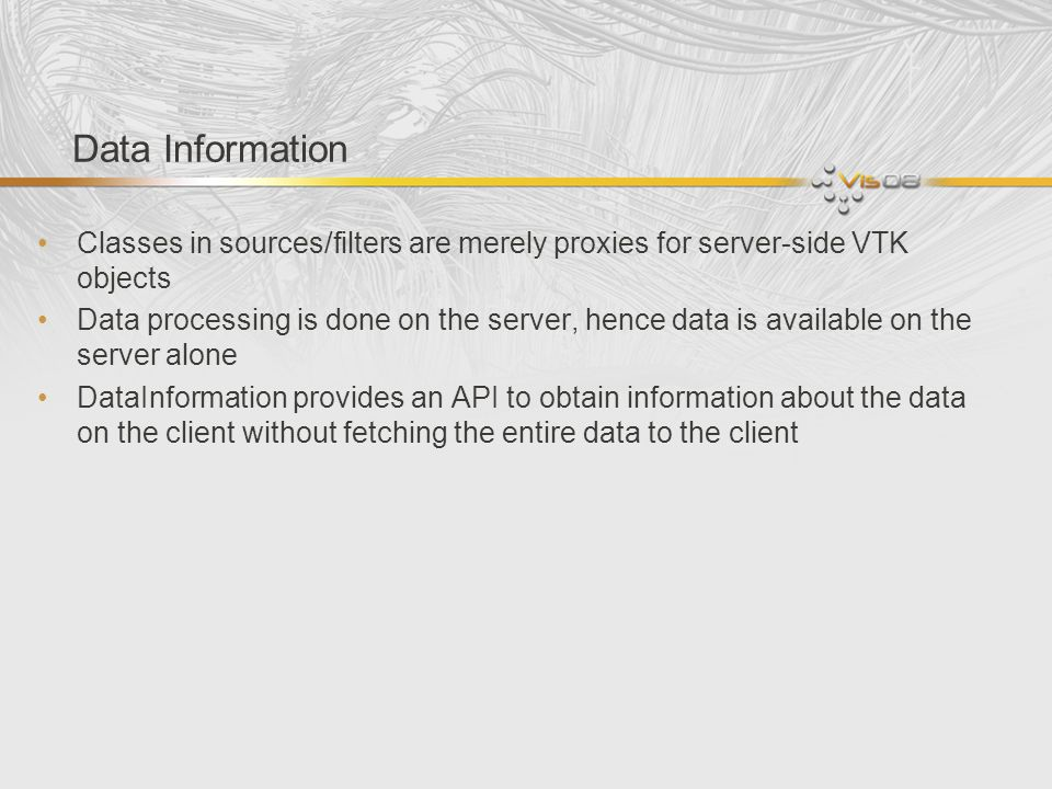 Data Information Classes in sources/filters are merely proxies for server-side VTK objects.