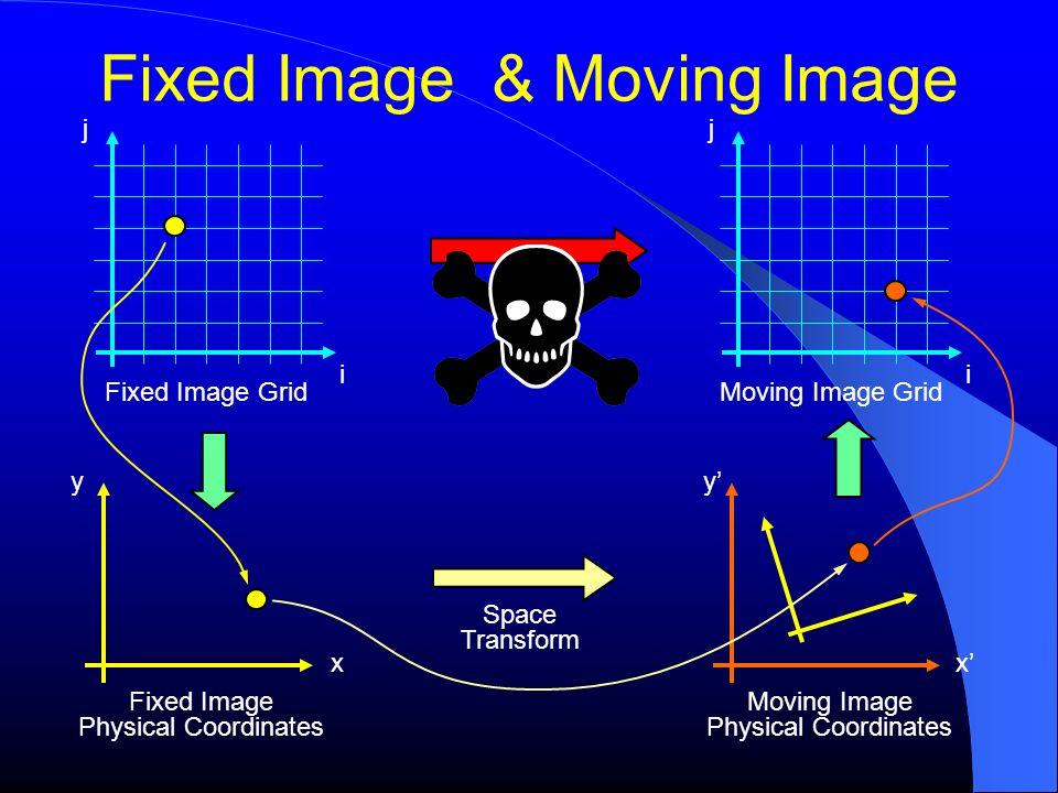 Fixed Image & Moving Image