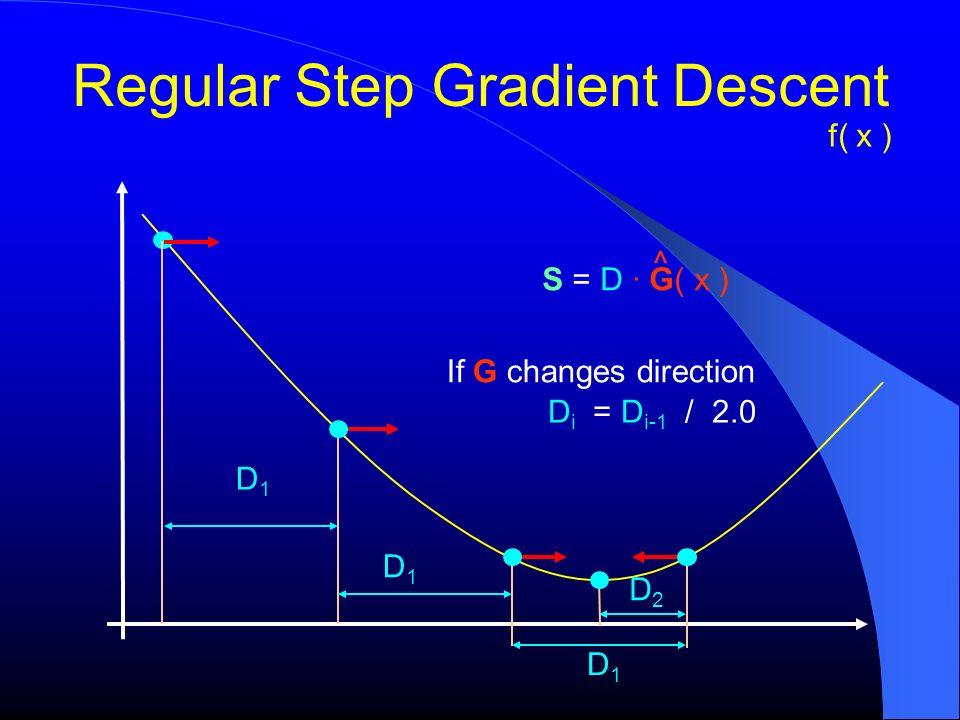 Regular Step Gradient Descent