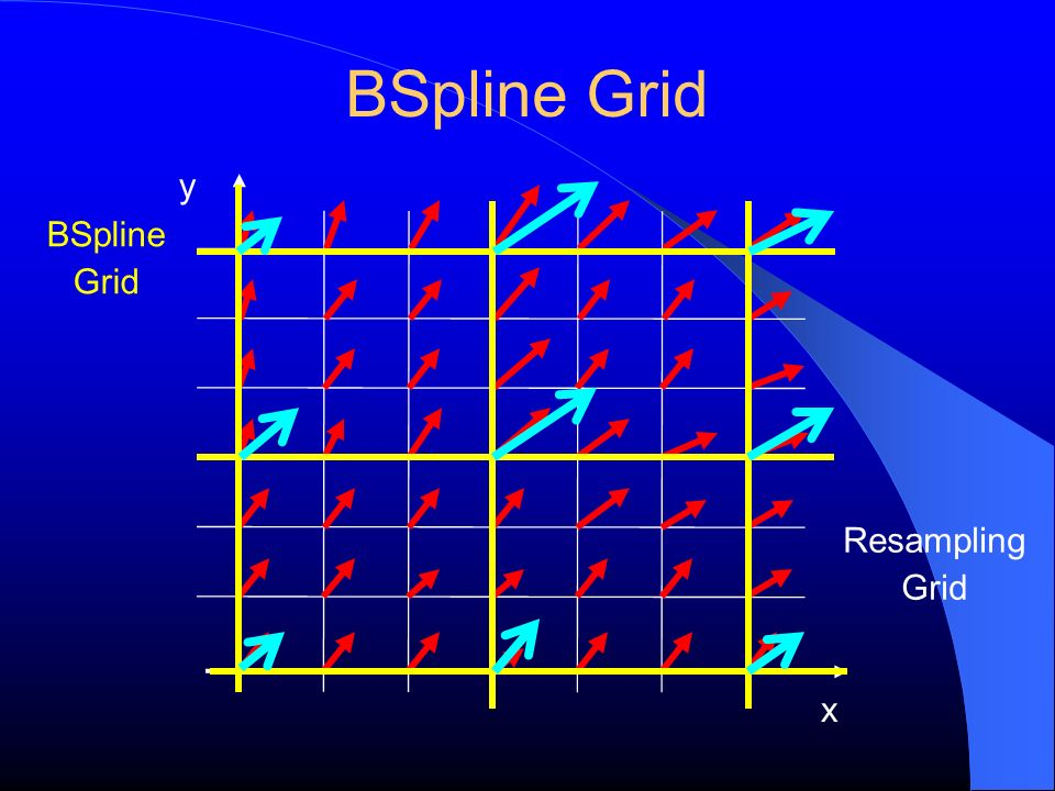 BSpline Grid y BSpline Grid Resampling Grid x