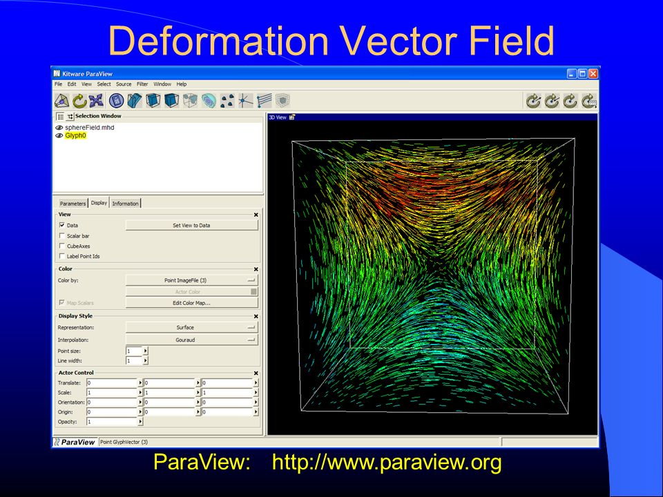 Deformation Vector Field