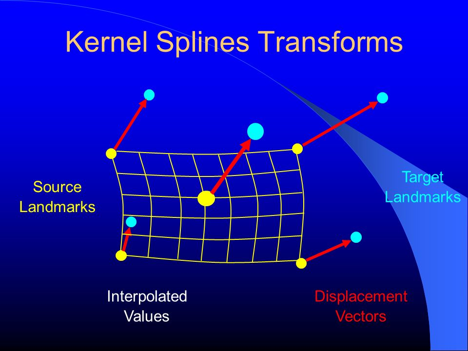 Kernel Splines Transforms
