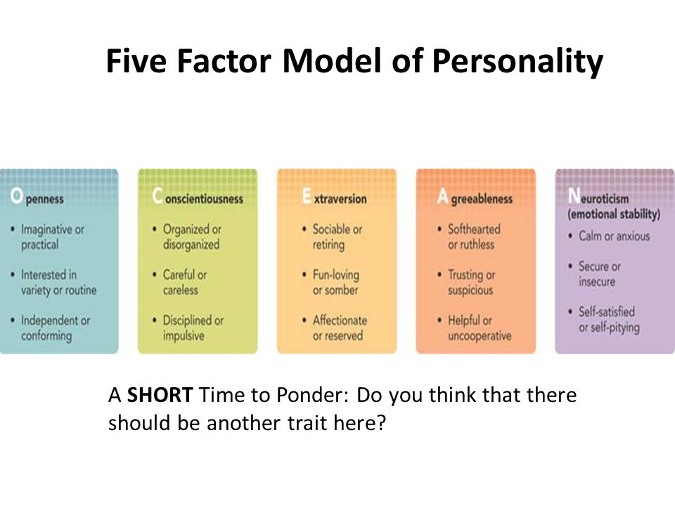 the factors that make up individual personality traits These types included physical features such as body shape and colouring but often included personality traits max factor used individual personality make-up.