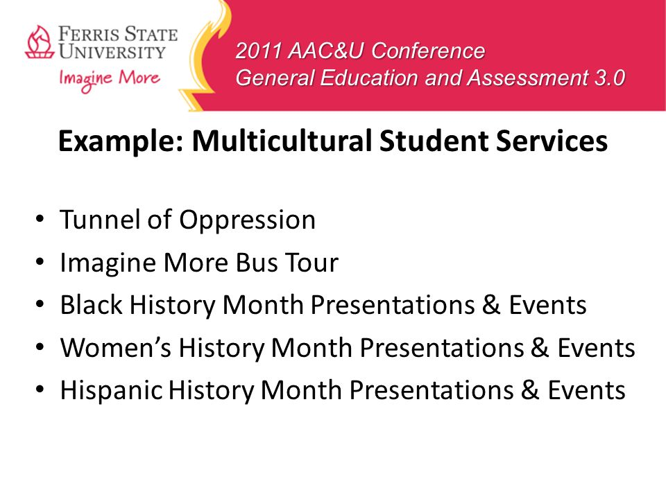 Example: Multicultural Student Services