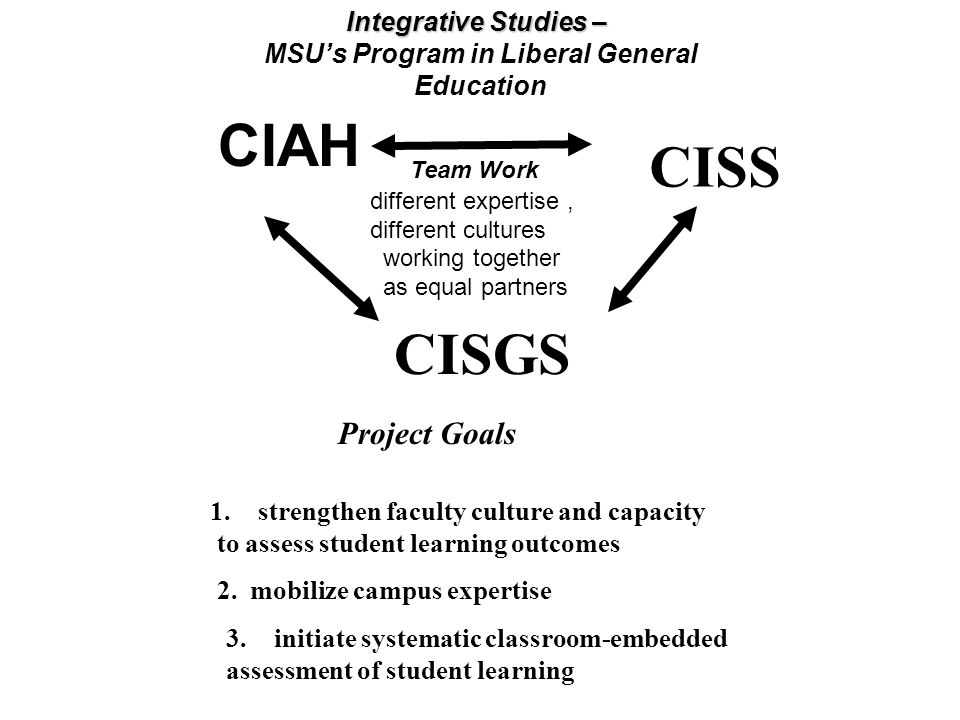 MSU's Program in Liberal General Education