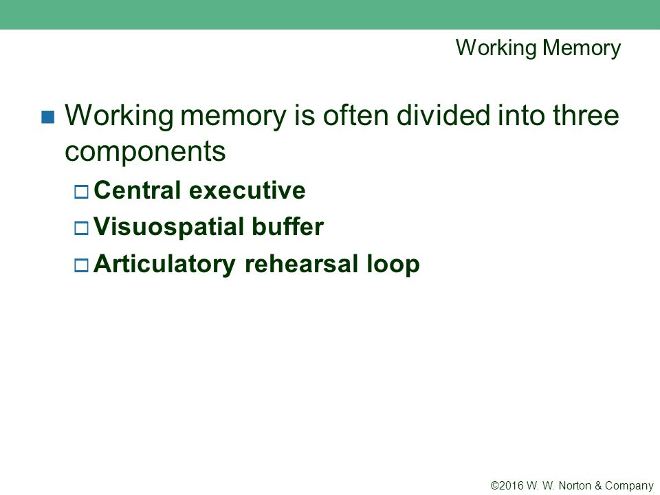 working memory and its components Working memory and its components essays: over 180,000 working memory and its components essays, working memory and its components term papers, working memory and its components research paper, book reports 184 990 essays, term and research papers available for unlimited access.