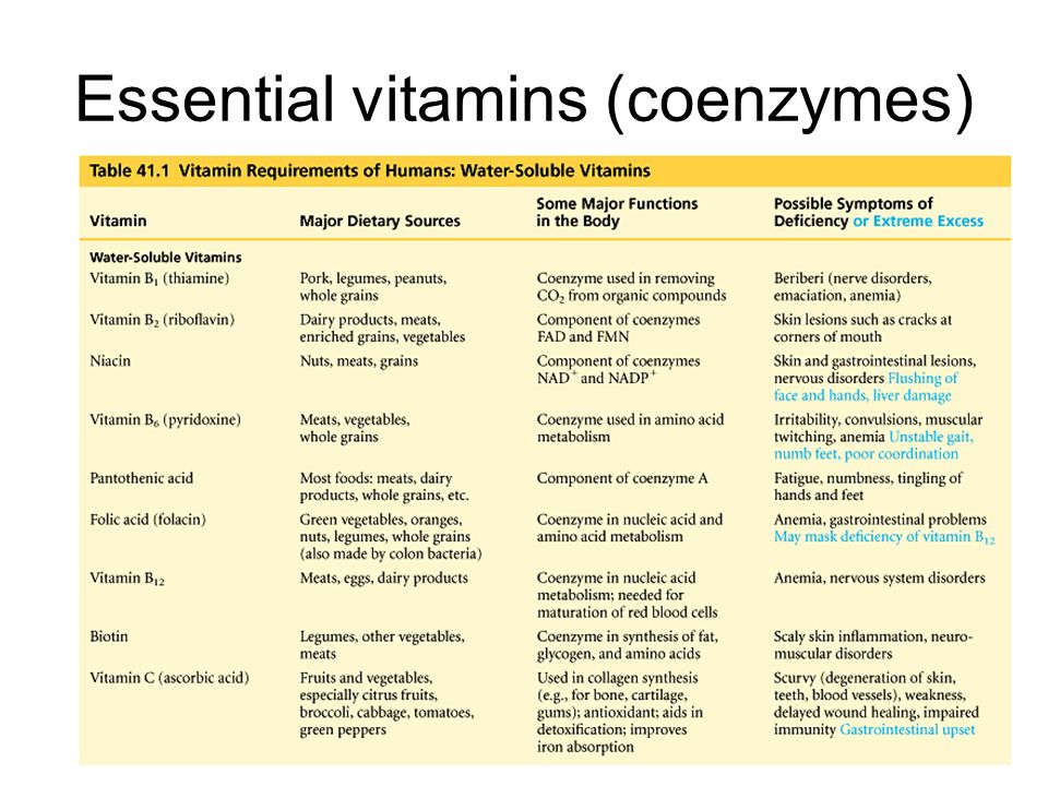 Animal Digestion and Nutrition - ppt download B12 Deficiency