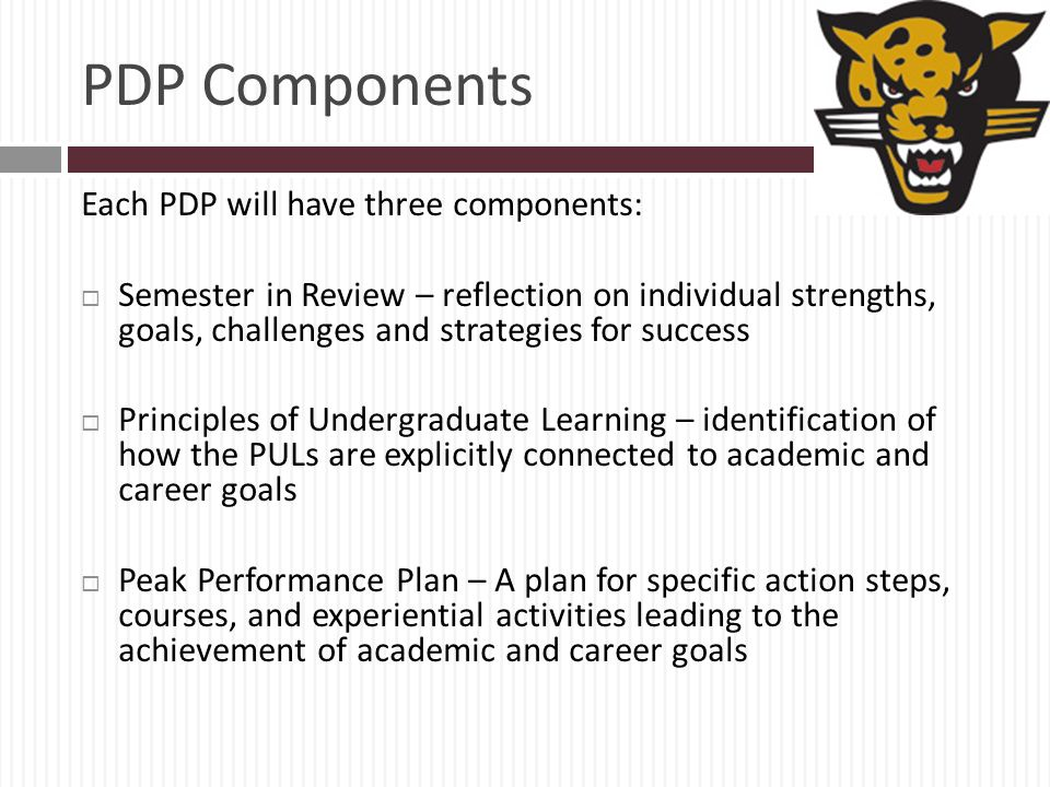 PDP Components Each PDP will have three components: