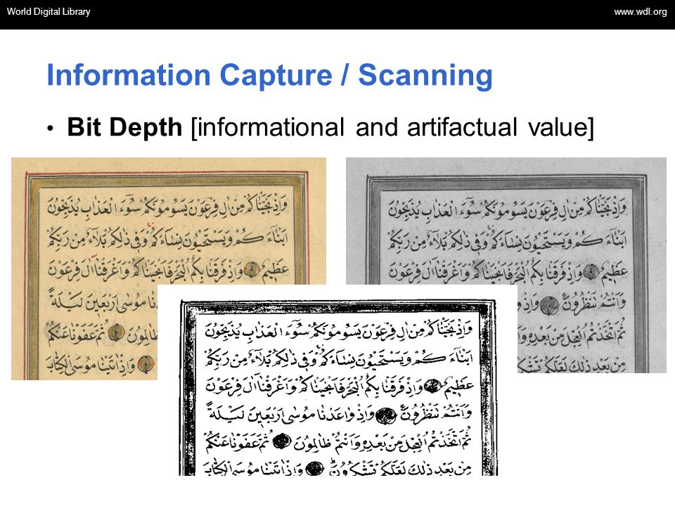 Information Capture / Scanning