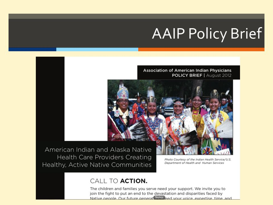 AAIP Policy Brief