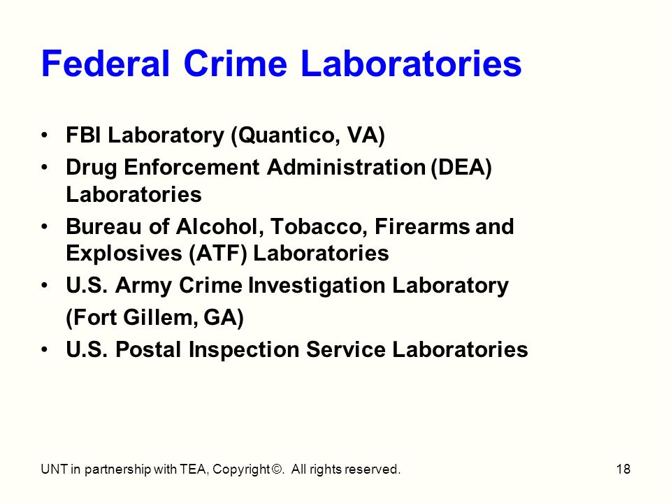 an introduction to the history of the federal bureau of investigation Federal bureau of investigation: federal bureau of investigation, principal investigative agency of the federal government of the united states.