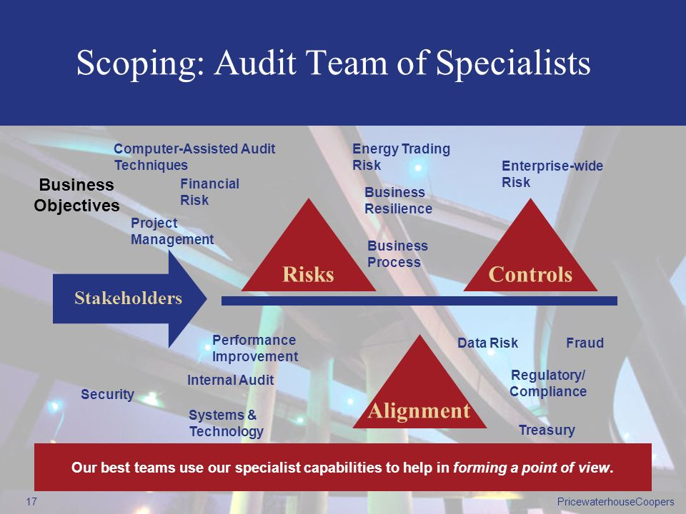 Scoping: Audit Team of Specialists