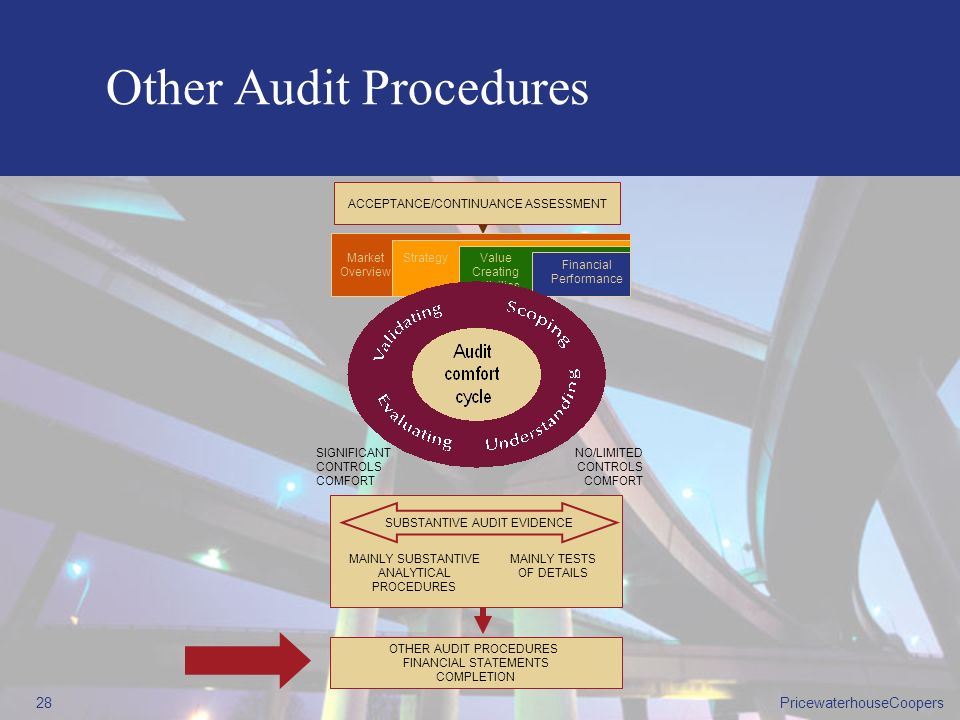 Other Audit Procedures
