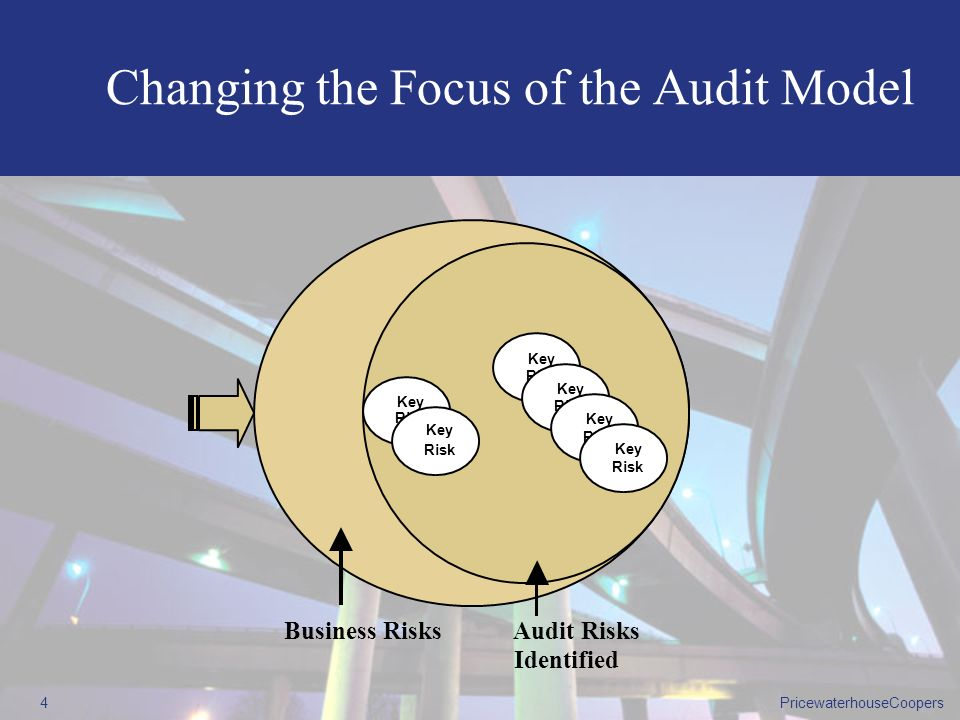 Changing the Focus of the Audit Model