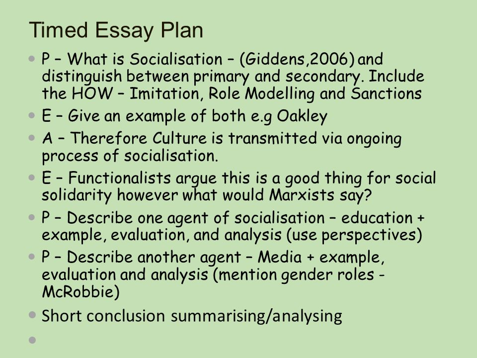 Essay agents socialization