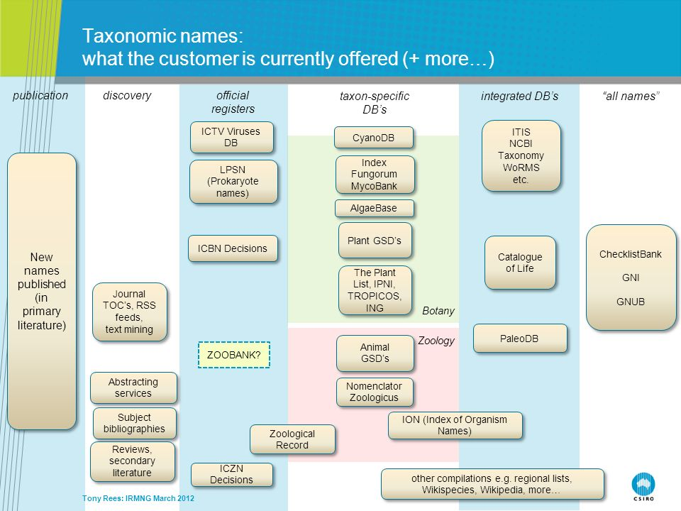 Taxonomic names: what the customer is currently offered (+ more…)