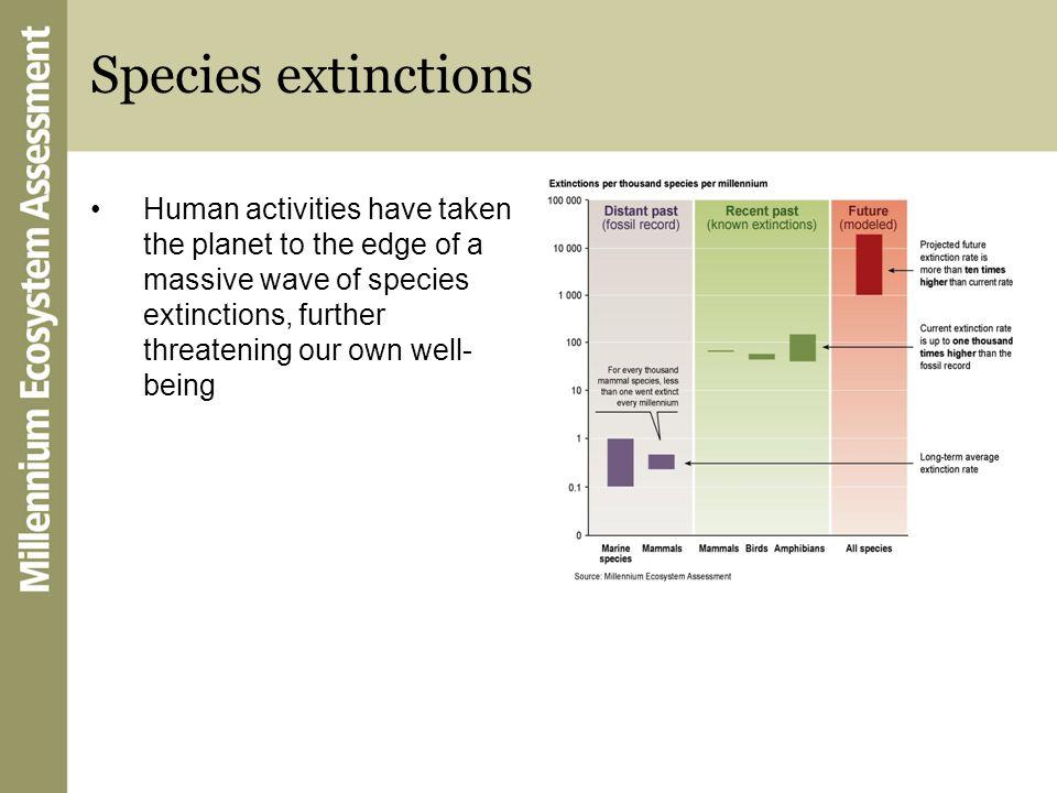 Species extinctions
