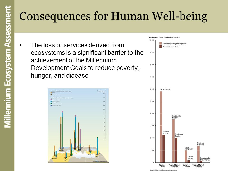 Consequences for Human Well-being