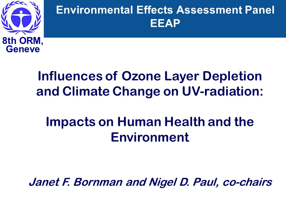 Environmental Effects Assessment Panel