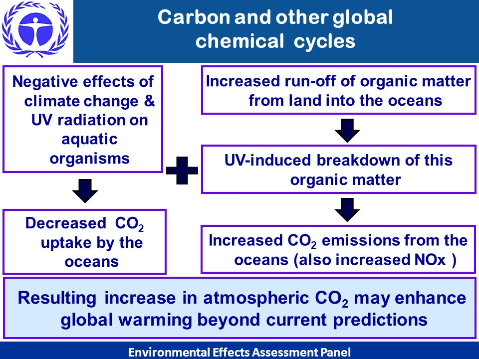 Carbon and other global