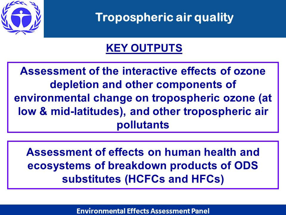 Tropospheric air quality Environmental Effects Assessment Panel