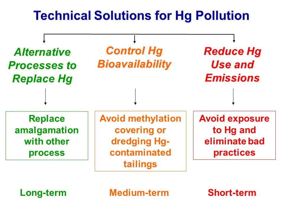 Technical Solutions for Hg Pollution