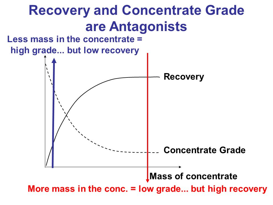 Recovery and Concentrate Grade are Antagonists