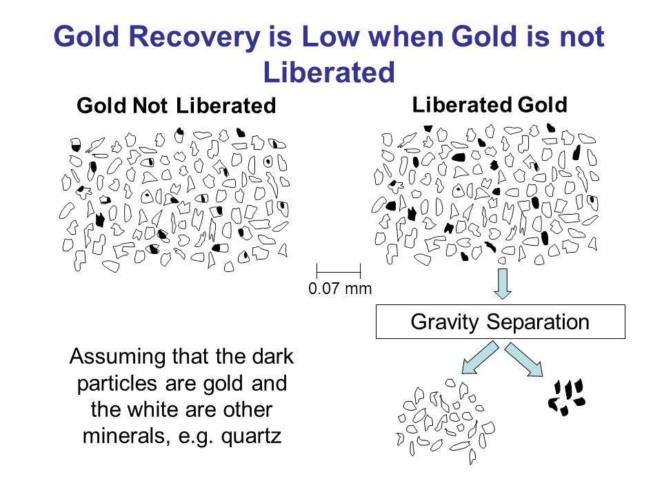 Gold Recovery is Low when Gold is not Liberated