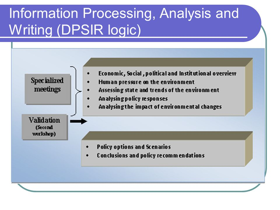 Information Processing, Analysis and Writing (DPSIR logic)