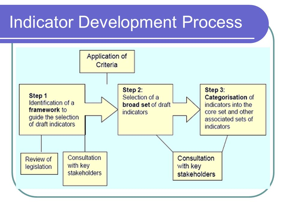 Indicator Development Process