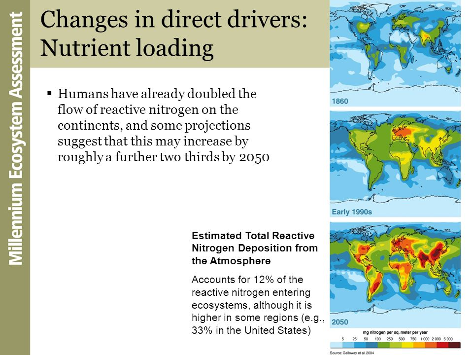 Changes in direct drivers: Nutrient loading