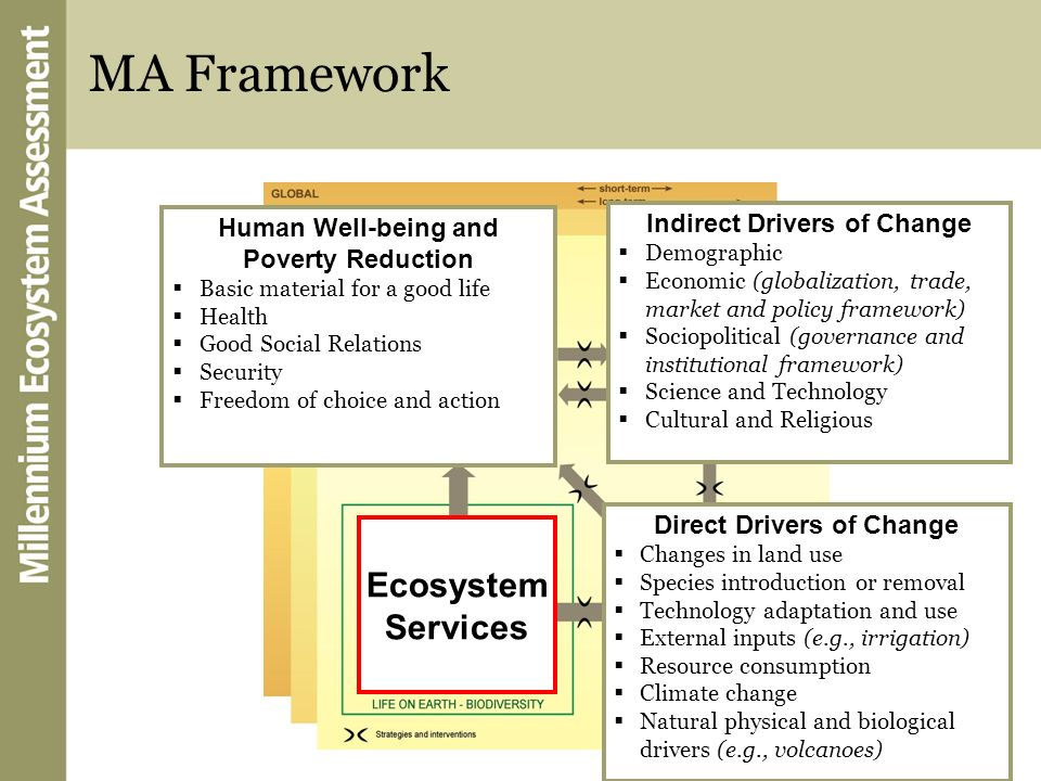Indirect Drivers of Change Direct Drivers of Change