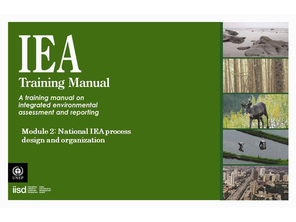 Module 2: National IEA process design and organization