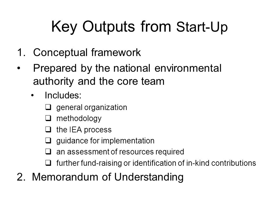Key Outputs from Start-Up