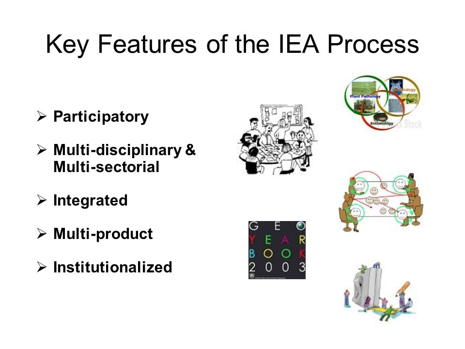 Key Features of the IEA Process