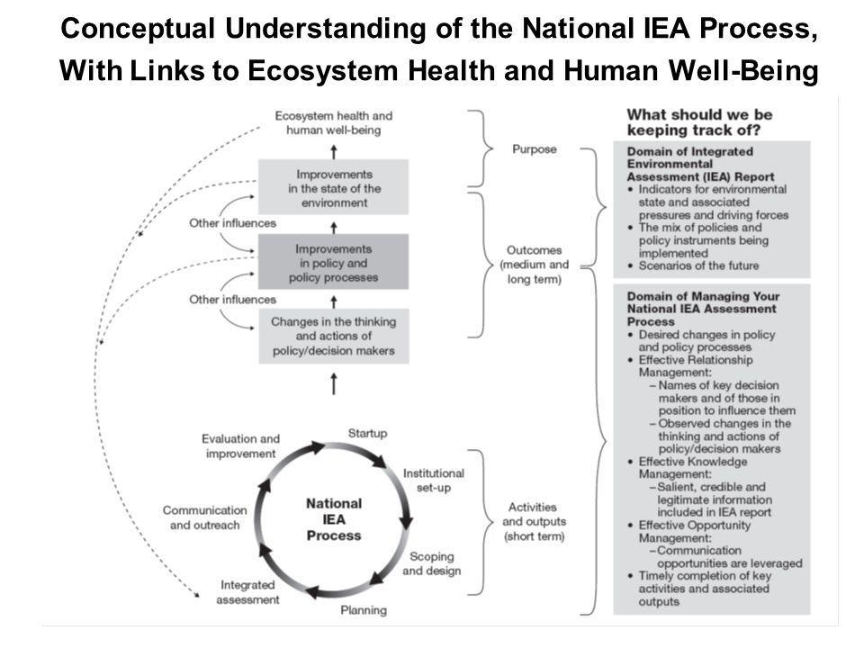 Conceptual Understanding of the National IEA Process, With Links to Ecosystem Health and Human Well-Being